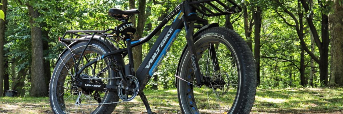 e-bike torque sensor